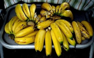Можно ли потолстеть от фруктов как яблоки или бананы