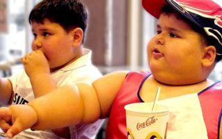 Почему так вредна быстрая еда фаст-фуд?
