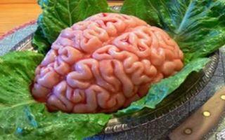 Полезная и натуральная пища для мозга из нижней производственной цепочки