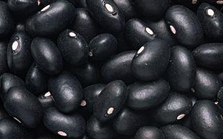 Черные бобовые для здорового питания
