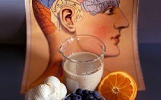 Какие продукты питания улучшают память