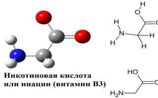 Ниацин или никотиновая кислота,  витамин В3 — что это такое