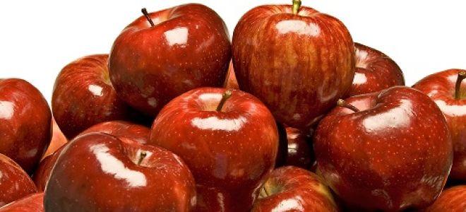 Яблоки полезный продукт