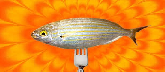 рыба сарпа
