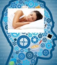 память зависит от сна