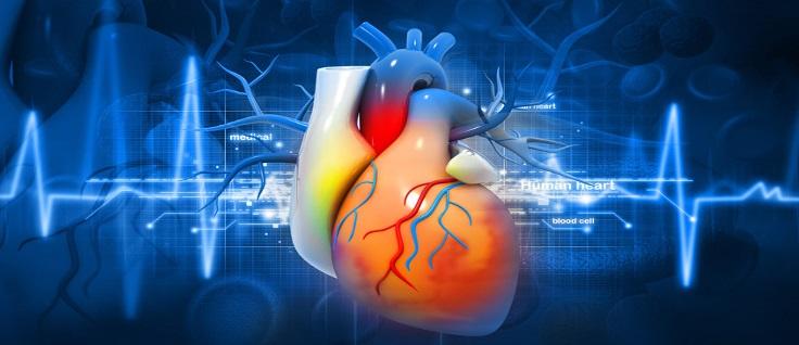 Причины сердечных заболеваний