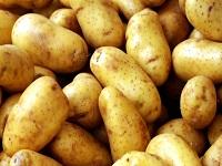 полезность картофеля