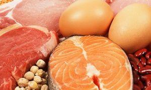 Про белковое питание  и  продукты содержащие белок