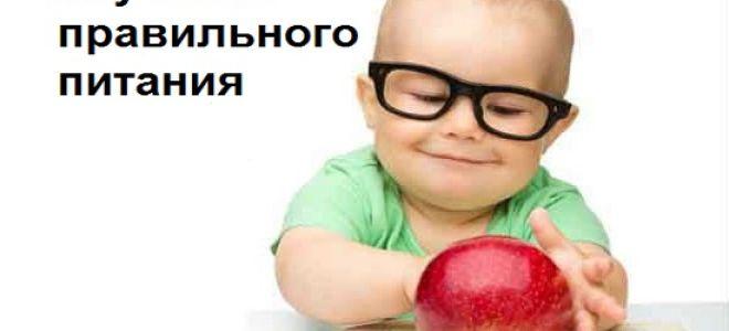 Изучение правильного питания в теории и на практике
