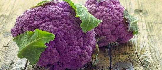 пурпуровая цветная капуста