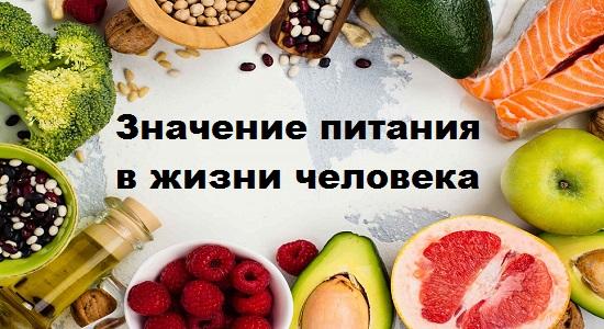 значение питания