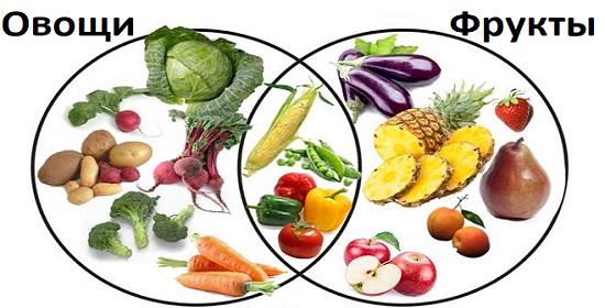 отличие фруктов от овощей