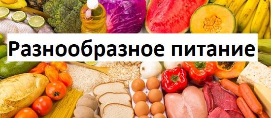 разнообразное питание